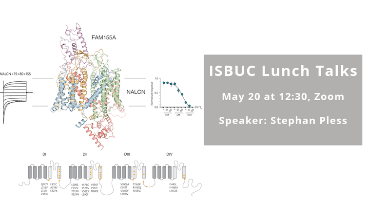 ISBUC Lunch talks