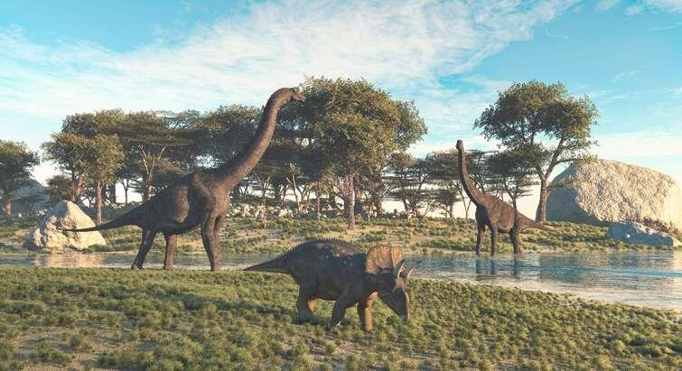 Illustration af dinosaurer