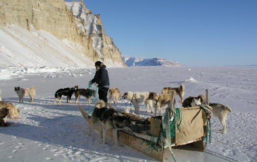 Several epidemiological studies have looked at the health implications of the transition from life as sealers and hunters in small isolated communities to a modern lifestyle with appreciable dietary changes.