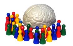Ny brik i puslespillet om hjernens funktion