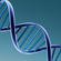 Read more about: Scientists break the genetic code for diabetes in Greenland