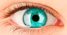 Read more about: Report shows risk of blindness halved over last decade