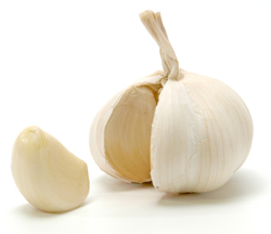 Garlic contains so little ajoene that you would need to eat around 50 a day to achieve the desired effect