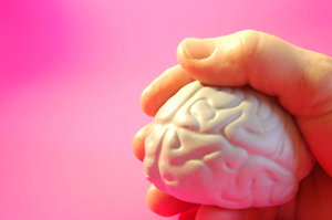 Forskere har fået ny viden om hjernen