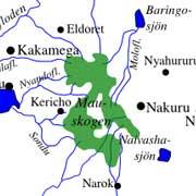 Regnskovsområde Mau Forest