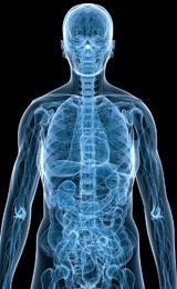 Forskere vil på sigt kunne kortlægge patientens molekylære profil