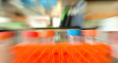 Forskerne har undersøgt forsøgspersonernes blodsukker med blodprøver i laboratoriet.