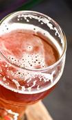 Fra øl til ung forskning