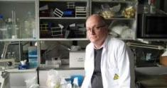 Professor Allan Randrup Thomsen