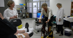 Professor Ylva Hellsten on an exercise bike in the lab.