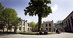 Rammen for Copenhagen Summer University er universitetets smukke campus på Frederiksberg; LIFE - Det Biovidenskabelige Fakultet.