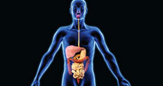 Researchers think that bacteria in the gut may affect the risk of developing type 2 diabetes.