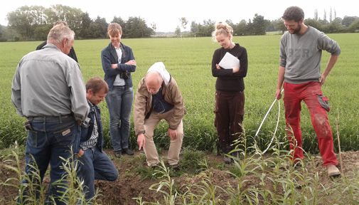 Studying drain pipes in the field